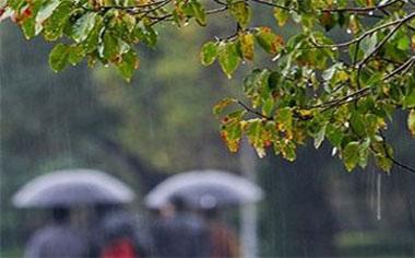 افزایش ۵۳۷ درصدی میزان بارش های پاییزه نسبت به سال گذشته در قهاوند