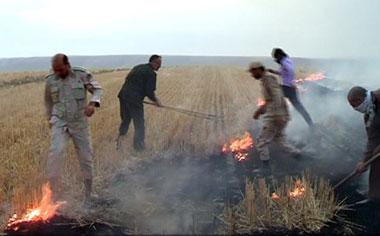 ۲ هکتار از منطقه حفاظت شده نشر قهاوند در آتش سوخت