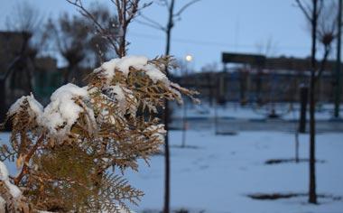 برف چهره شهر قهاوند را سفید کرد