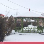 بارش سنگین برف در قهاوند (4)