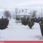 بارش سنگین برف در قهاوند (9)